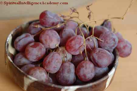 Grapes after 4 months in the fridge. Not even Mildew touches it!